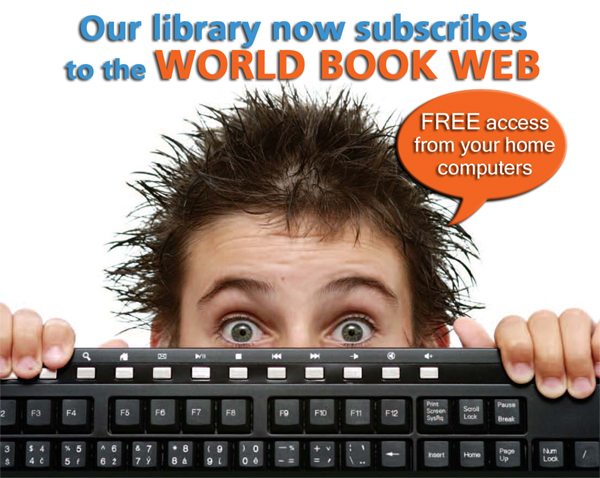 our-library-now-subscribes